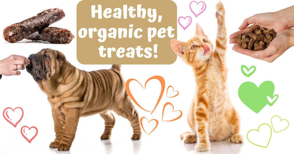 healthy organic pet food treats south africa