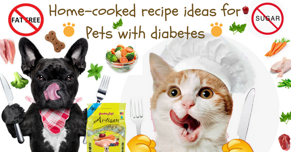 Prepare healthy meals for your pet with diabetes