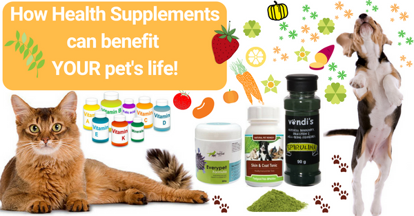 How can health supplements benefit your pet!