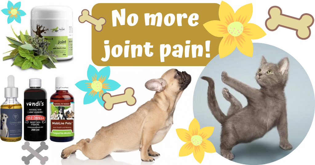 joint pain arthritis natural remedy prevention treatment animals dogs cats pets