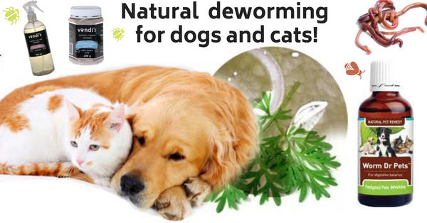 Natural deworming for dogs and cats!