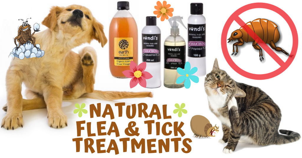 natural tick and flea treatments for pets
