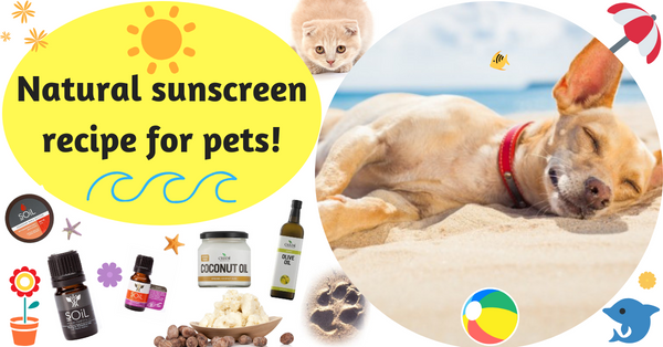 Natural sunscreen for pets recipe
