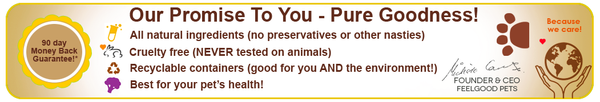 Feelgood Pets: Natural & Organic Online Health for Pets, Including Dogs, Cats, Birds & Horses