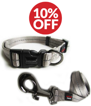 Dog Accessory Combo Pack: Grey Collar + Grey Leash (SAVE 10%)
