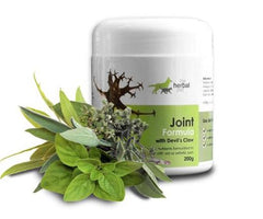 Herbal Pet Joint Formula for stiff, old or arthritic pets