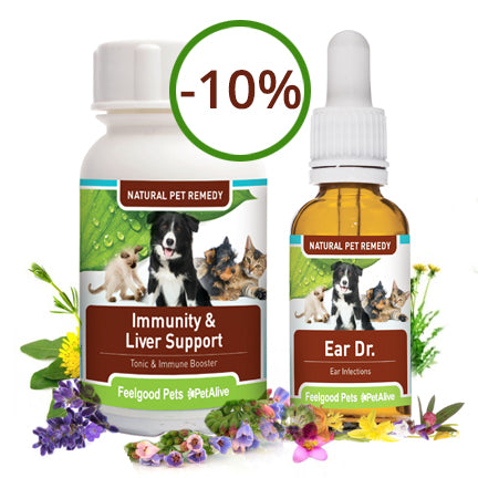 Savings Combo! Immunity & Liver Support Plus Ear Dr (SAVE 10%!)