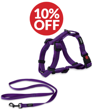 Dog Accessory Combo Pack: Purple H-Harness + Purple Leash (SAVE 10%)