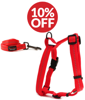 Dog Accessory Combo Pack: Red H-Harness + Red Leash (SAVE 10%)