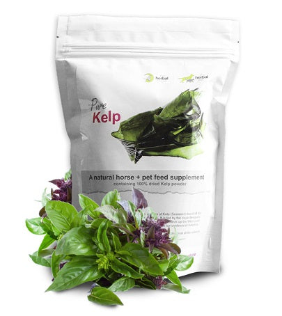 Herbal Pet Kelp Powder - Natural Pet Supplement
