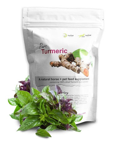 Herbal Pet Turmeric Root Powder - Natural Pet Supplement