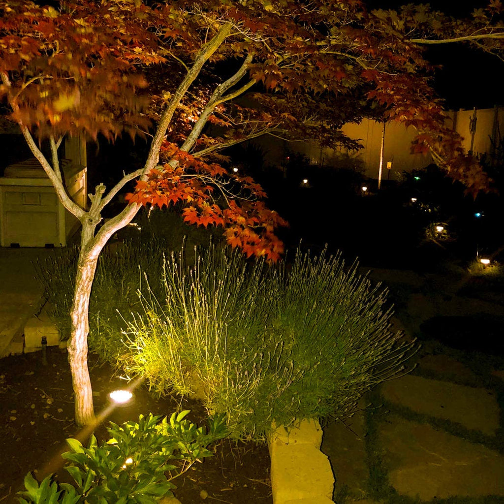 Malibu 35 Watt Deck In-ground Well Low Voltage Landscape Lighting