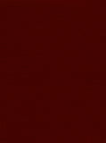 100% Polyester Maroon Colour Double Pique