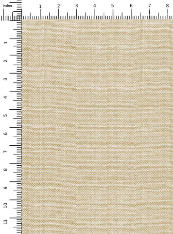 products/19L01STB205_Scale.jpg