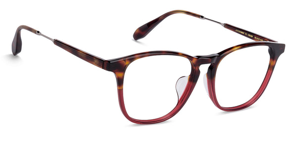 Latest Homepage-Wayfarer-Brown-EG