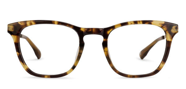 Eyeglasses For Men-Wayfarer-Brown Tortoise-EG