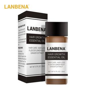 Lanbena Hair Growth Essential Oil - 20ml, Labena - HippoMart.SG - Premium Item at Direct Factory Price