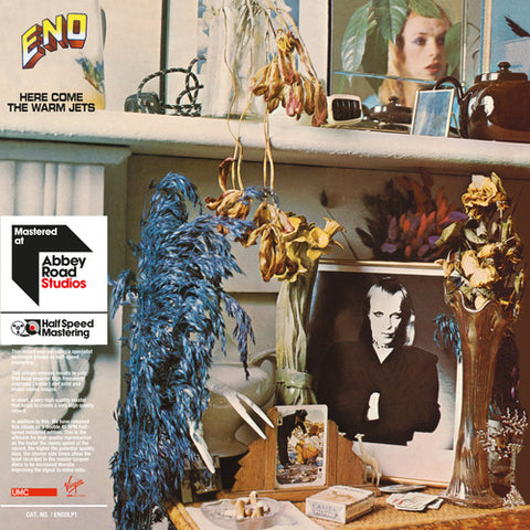 Brian Eno - Here Come The Warm Jets 2LP
