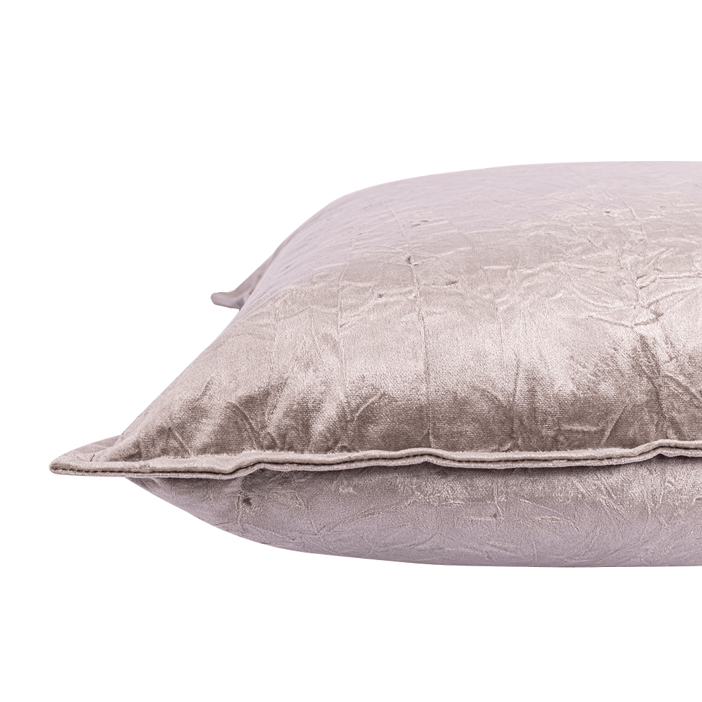 Bewitched Feather Grey Cushion