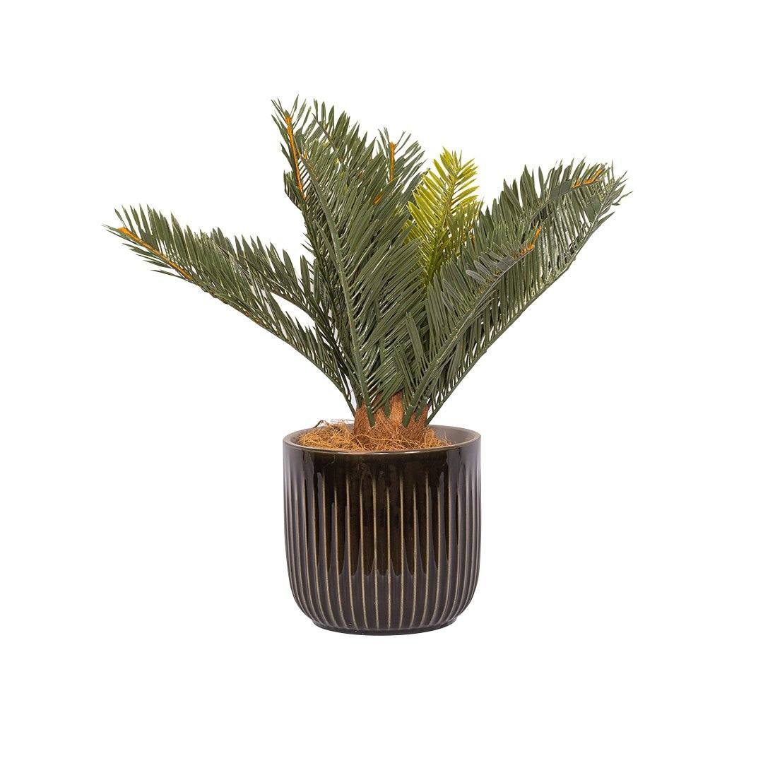 Faux Cycad Plant & Burrows Planter| | Leather Gallery