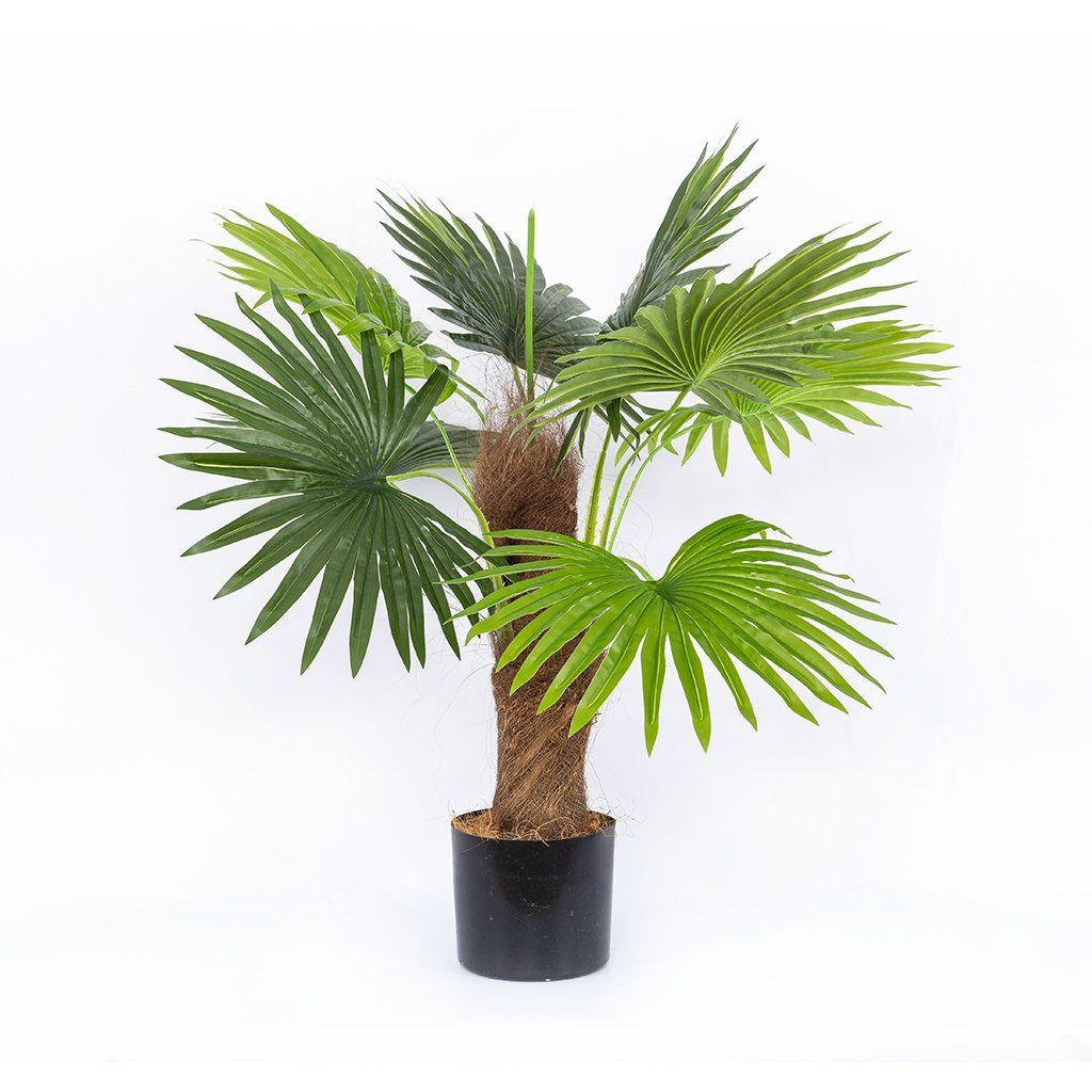 Faux Large Palm Plant | Leather Gallery