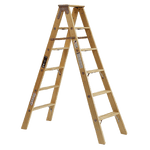 6' Dual Wooden Ladder