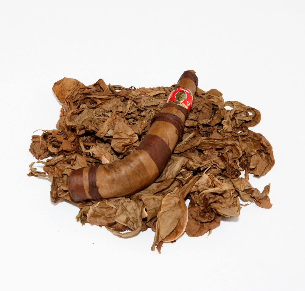 "LA FARAONA - TABACCO PIPE TWO COLORS  ""We Only Roll Premium Longfiller Tabacco Cigars"""