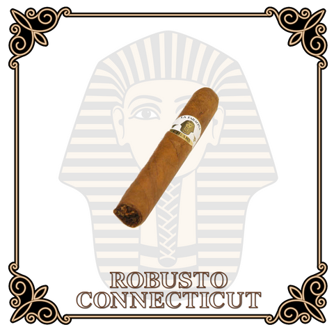 Robusto Connecticut