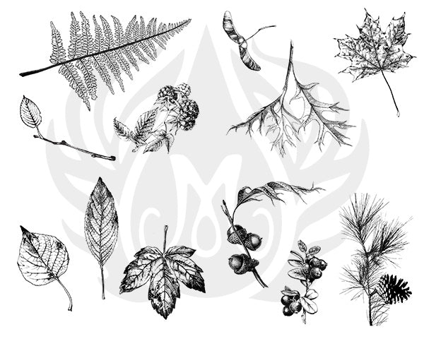 DSS-111 Silkscreen Botanical Leaves