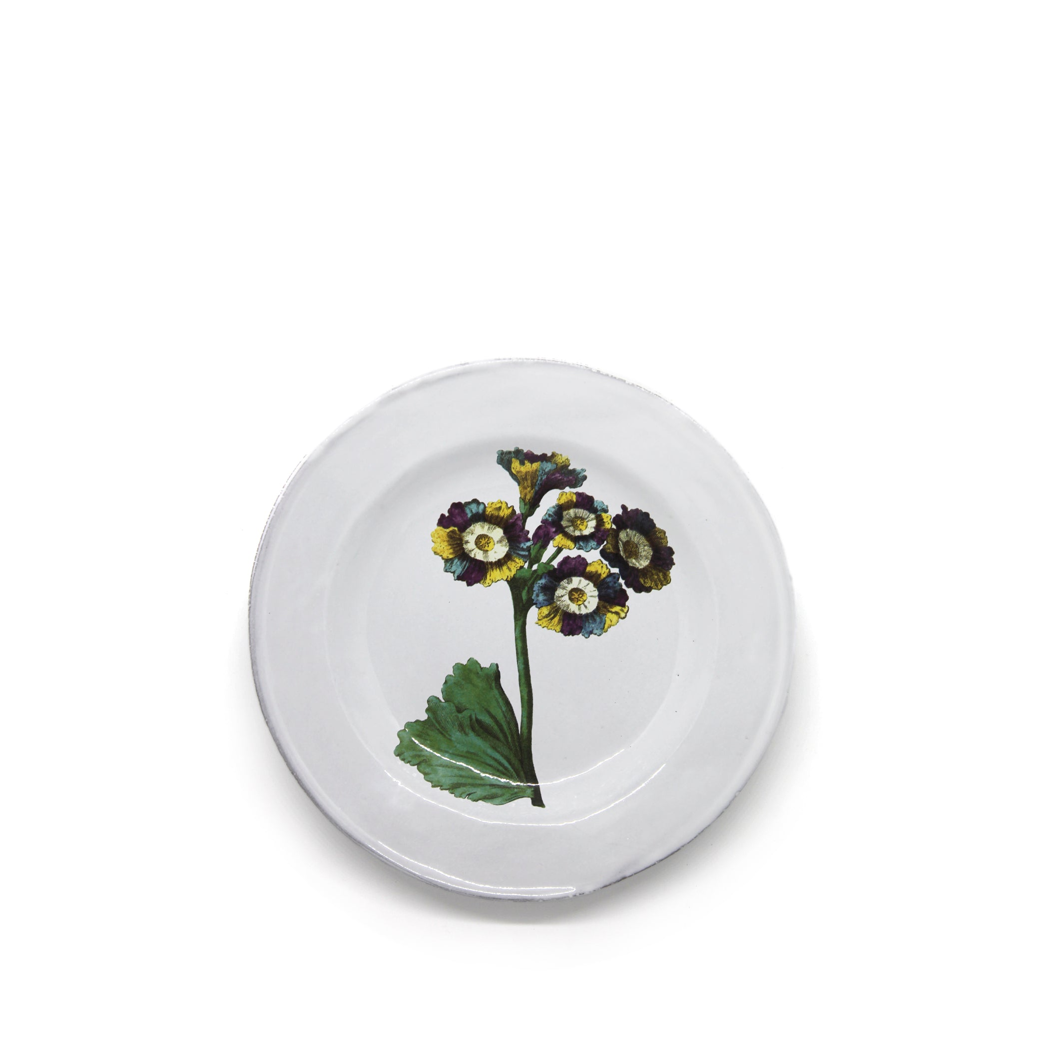 Lord Willoughby's Auricula Flower Plate by Astier de Villatte