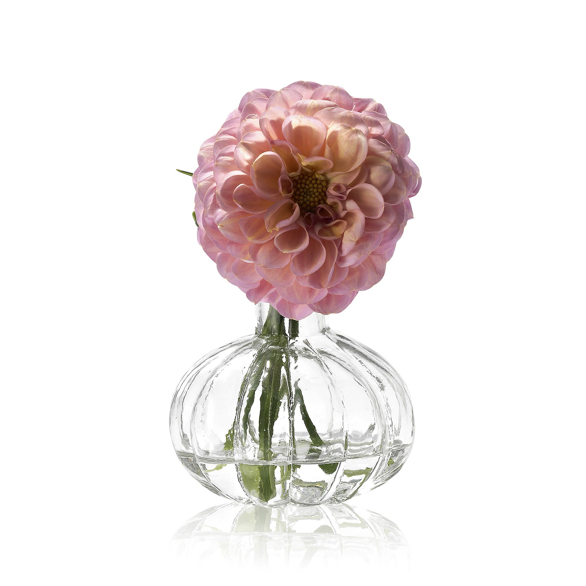 Glass Flower Vase - Marianne