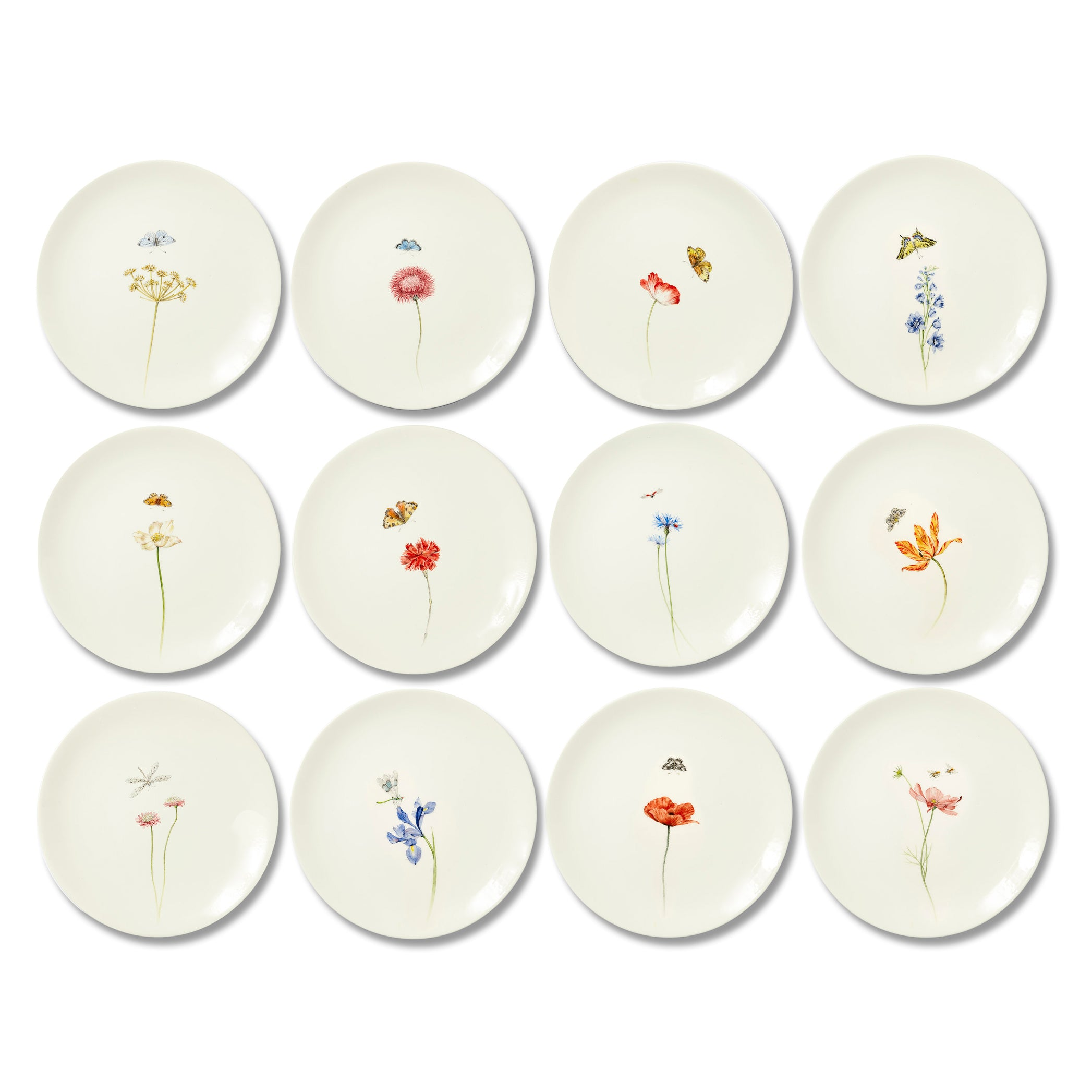 Bloom Silybum Marianum Dinner Plate, 25cm