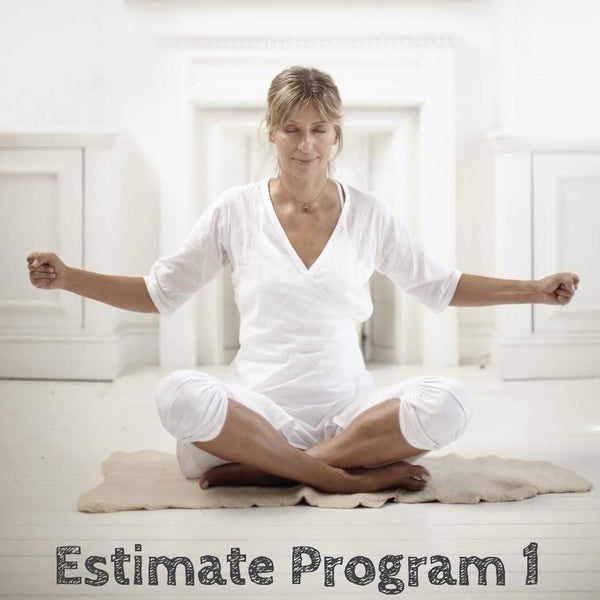 Estimate Program 1: Root Chakra - Confidence and Acceptance