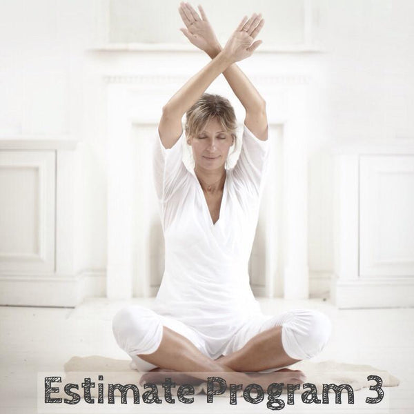 Estimate Program 3: Navel Chakra - Courage, Self-Esteem & Willpower