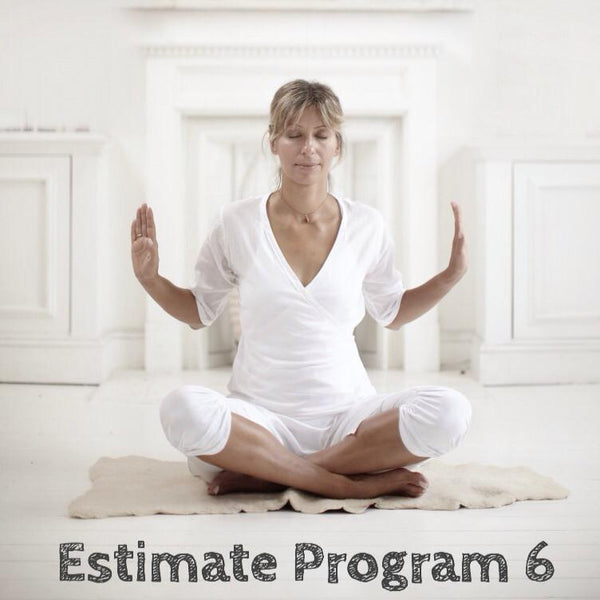 Estimate Program 6: Third-eye Chakra - Vision and Intuition