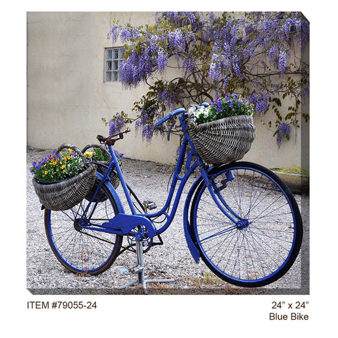 Blue Bike Outdoor Canvas Art - Outdoor Art Pros