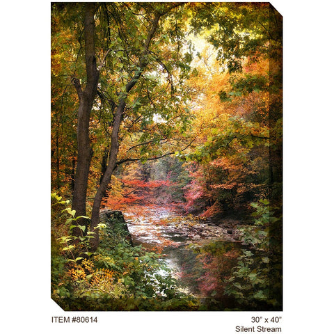 Silent Stream Outdoor Canvas Art - Outdoor Art Pros