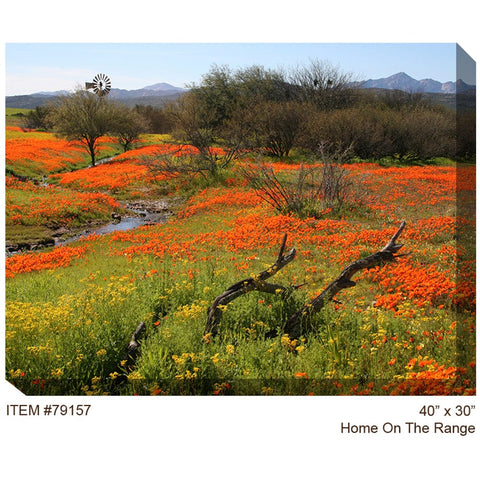 Home on the Range Outdoor Canvas Art - Outdoor Art Pros