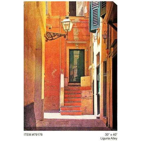Liguria Alley Outdoor Canvas Art - Outdoor Art Pros