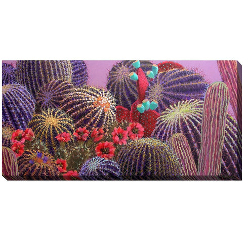 Evening Cactus Outdoor Canvas Art - Outdoor Art Pros