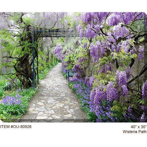 Wisteria Path Outdoor Canvas Art - Outdoor Art Pros
