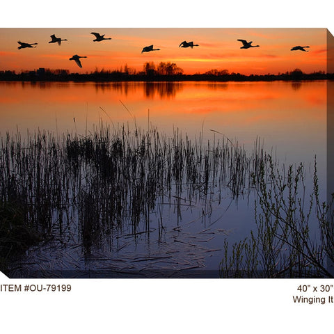 Winging It Outdoor Canvas Art - Outdoor Art Pros