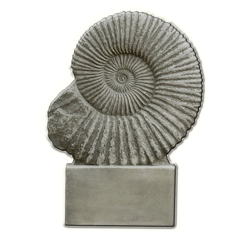 Ammonite Cast Stone Garden Statue - Outdoor Art Pros