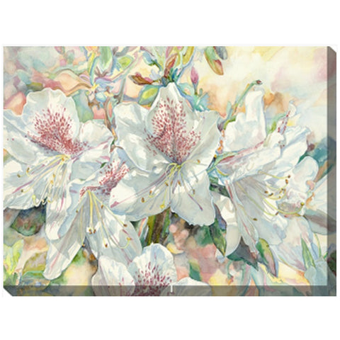 Azaleas #2 Outdoor Canvas Art - Outdoor Art Pros