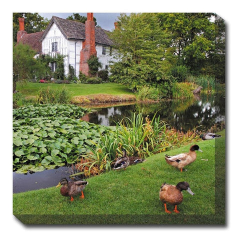 Duck Manor Canvas Wall Art