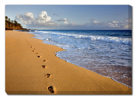 Footprints in Kauai Outdoor Canvas Art