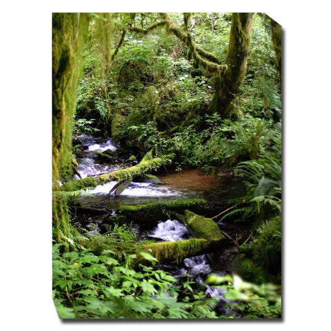 Forest Stream Outdoor Canvas Art - Outdoor Art Pros
