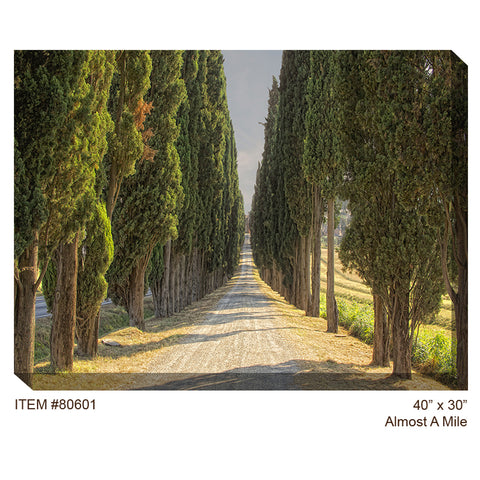 Almost a Mile Outdoor Canvas Art - Outdoor Art Pros