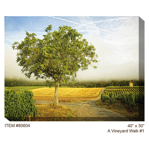 A Vineyard Walk #1 Outdoor Canvas Art - Outdoor Art Pros