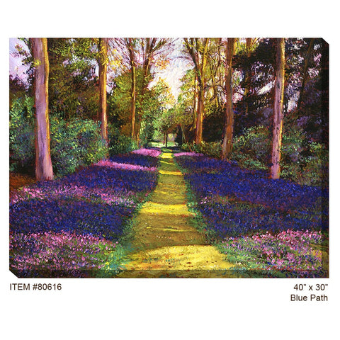 Blue Path Outdoor Canvas Art - Outdoor Art Pros